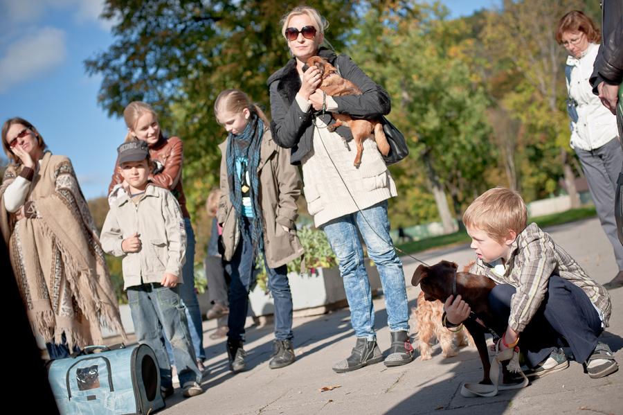 naminių gyvūnėlių laiminimas Sereikiškių parke