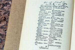 Žodyno puslapis.