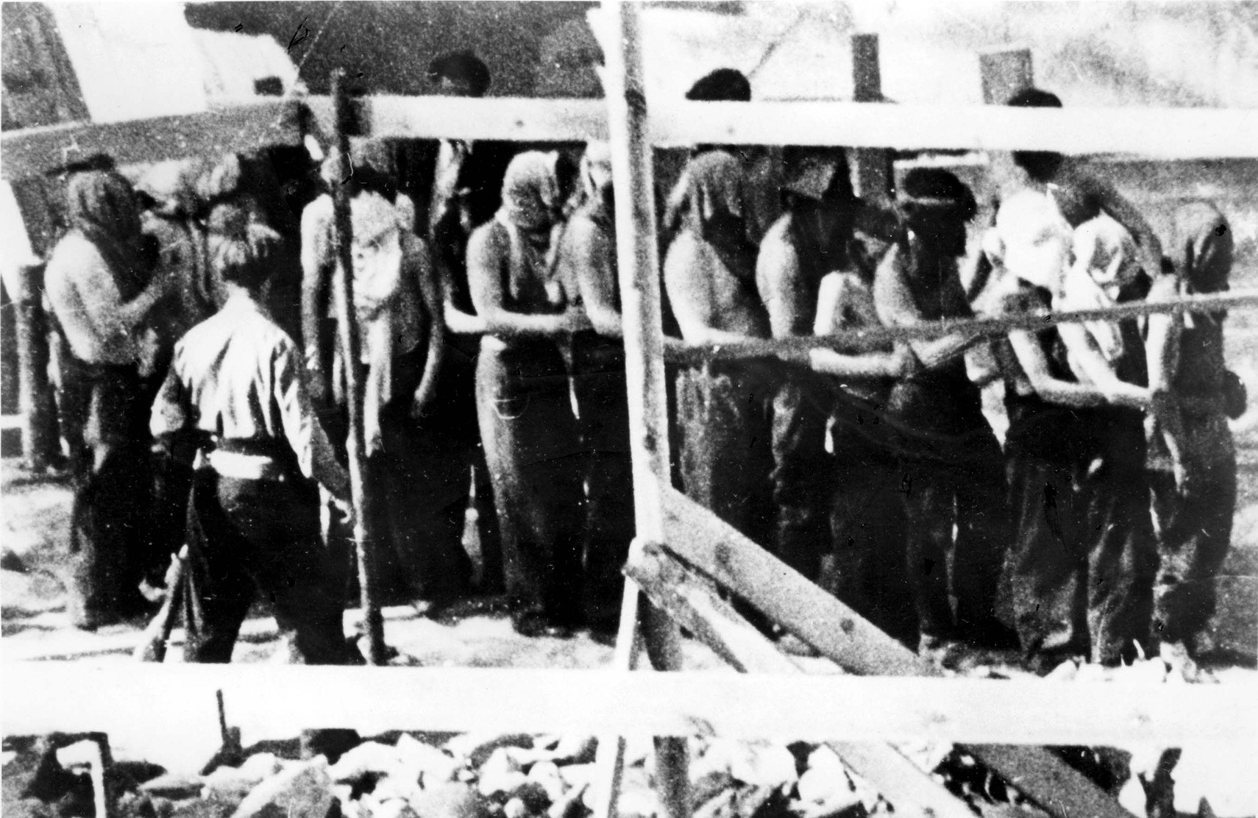 Žydai varomi sunaikinti.