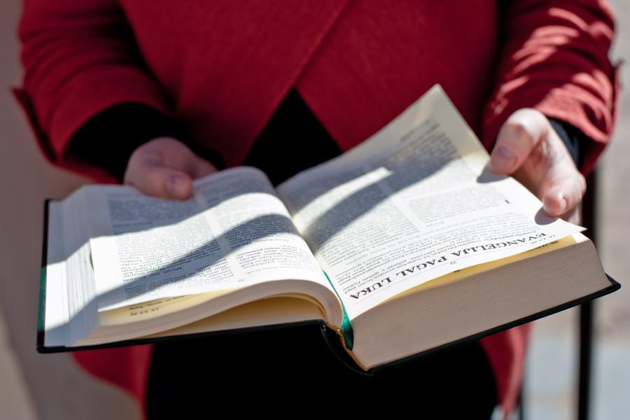 vaikinas suvienija galimybių strategijų bibliją)