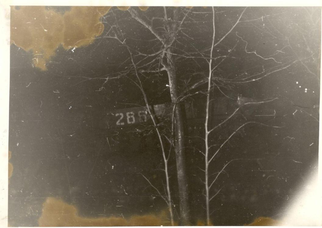 Sunkiosios technikos mašinos numeris ir medis.