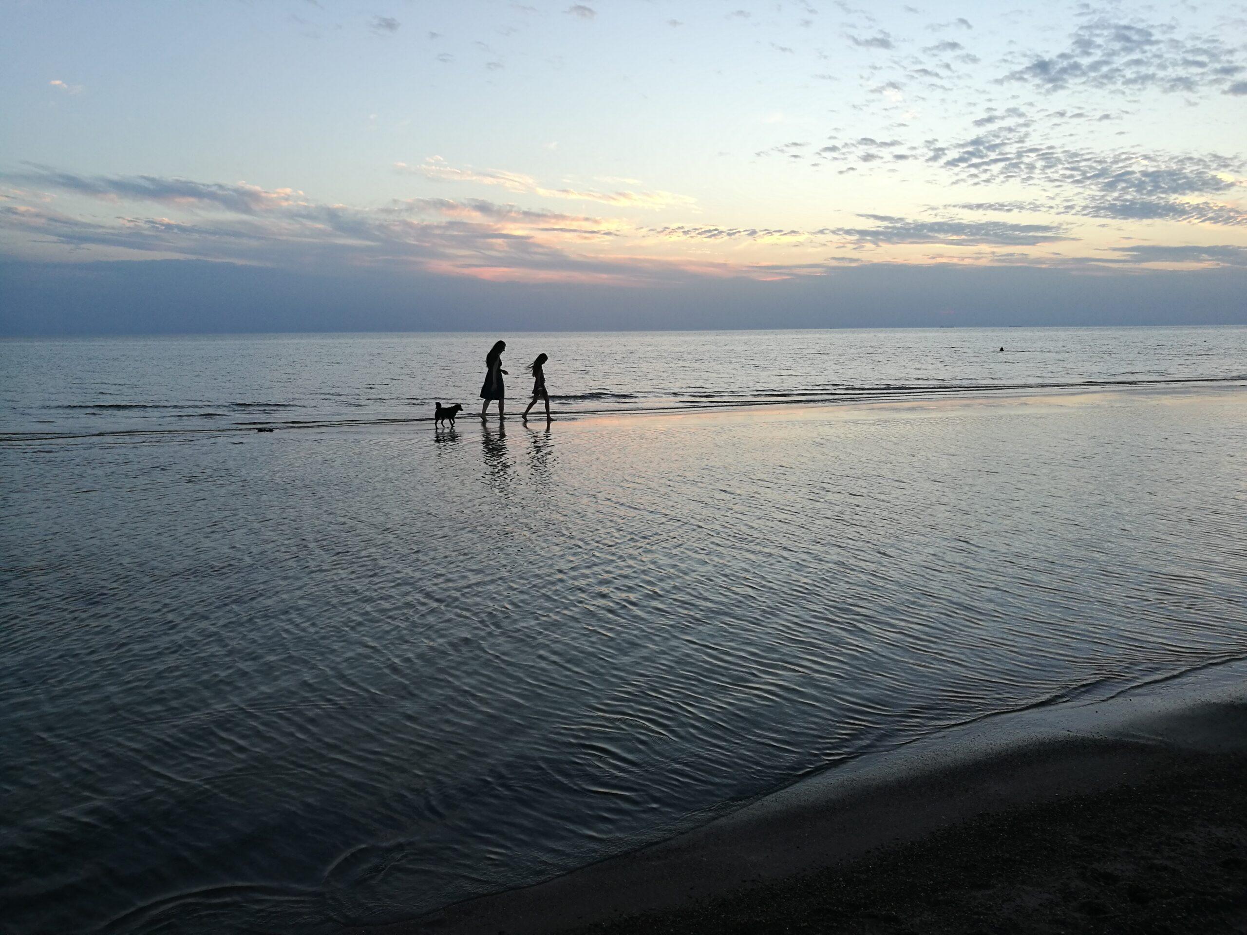 Tolumoje pajūriu eina moteris, vaikas ir šuo. Vakaras, prieš pat saulėlydį.