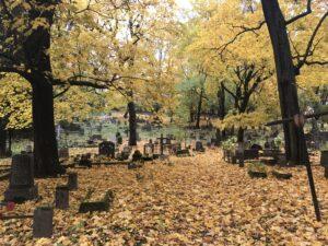 Auksinis ruduo kapinėse.