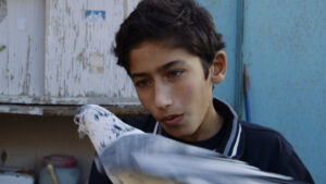 """Filmo """"Paukščių berniukas"""" (rež. Simon Lereng Wilmont, 2019) kadras"""