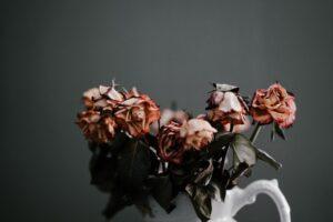 Nuvytusios gėlės.