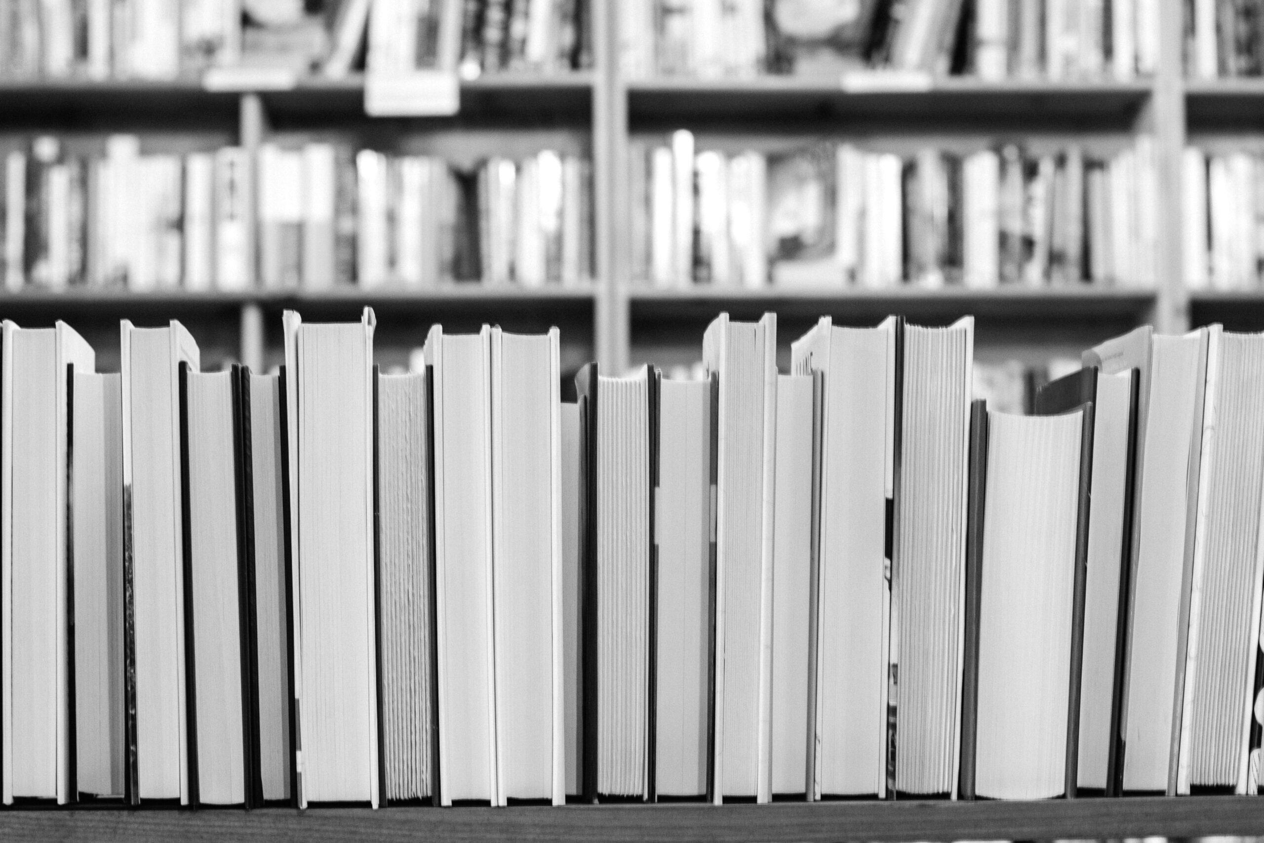 Knygų lentyna.